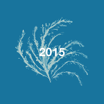 Playlist art flower 2015