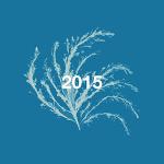 Playlist art flower 2015